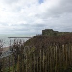 Day 2 - Hastings (5)