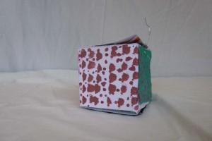 cube2a