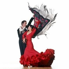Photo flamenco